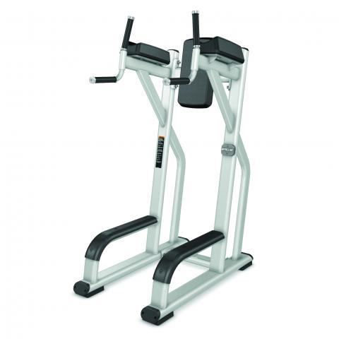 Precor Vertical Knee Up